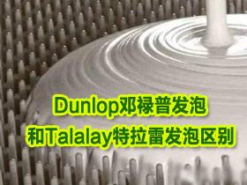 纯乳胶床垫制作工艺——Dunlop邓禄普发泡和Talalay特拉雷发泡区别