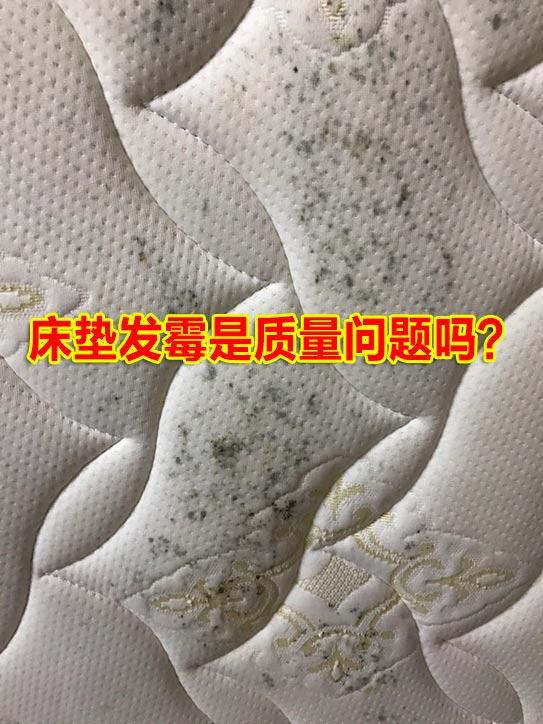 床垫质量鉴别之——床垫起霉是质量问题吗?