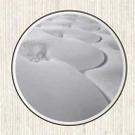 进口偏硬床垫哪款好?美国金可儿偏硬双人护脊床垫——美玉评测
